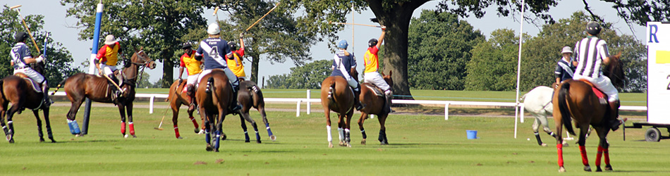 Royal County of Berkshire Polo Club Cases: Cassabo.com